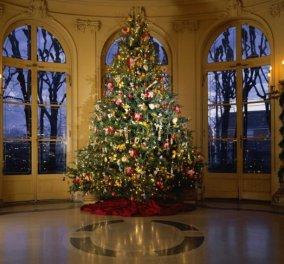Ξέρετε αλήθεια πότε και πως καθιερώθηκε το χριστουγεννιάτικο δέντρο στην Ελλάδα;  - Κυρίως Φωτογραφία - Gallery - Video