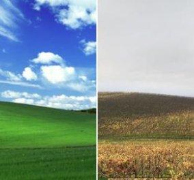 Το πράσινο τοπίο των Windows XP είναι αληθινή φωτογραφία! Διαβάστε την ιστορία του πιο διάσημου wallpaper - Κυρίως Φωτογραφία - Gallery - Video