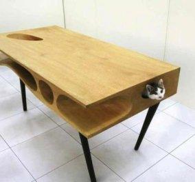 CATable: Το ιδανικό τραπέζι για να δουλεύετε, ένας μικρός... παράδεισος για τη γάτα σας! (φωτό) - Κυρίως Φωτογραφία - Gallery - Video