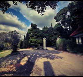 Έκθεση φωτογραφίας για το Τατόι στις τέσσερις εποχές του χρόνου-40 φωτογράφοι, 100 φωτογραφικά στιγμιότυπα από το ιστορικό κτήμα που αναζητά μια χείρα βοηθείας για να διασωθεί - Κυρίως Φωτογραφία - Gallery - Video