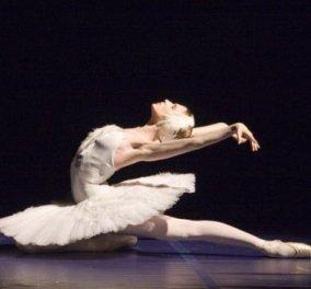 Δυναμική επανεκκίνηση με όπερα, χορό, θέατρο και μεγάλα ονόματα όλο το νέο πρόγραμμα του Μεγάρου Μουσικής Αθηνών - Κυρίως Φωτογραφία - Gallery - Video