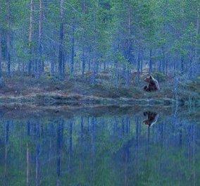 Η φωτογραφία της ημέρας: «Ο καθρέπτης της φύσης» - Κυρίως Φωτογραφία - Gallery - Video