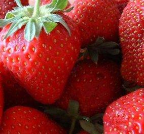 Οι φράουλες κάνουν καλό στην οστεοαρθρίτιδα!! - Κυρίως Φωτογραφία - Gallery - Video