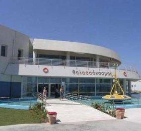 Το AQUARIUM της Κρήτης μια καλοκαιρινή επίσκεψη που θα σας συναρπάσει - Κυρίως Φωτογραφία - Gallery - Video