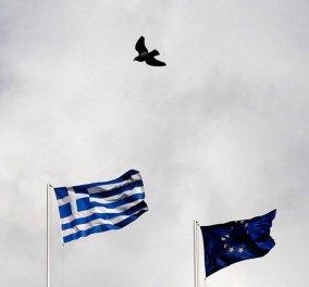 Α. Μέρκελ: «Δεν σχεδιάζουμε την έξοδο της Ελλάδας από το ευρώ» - Κυρίως Φωτογραφία - Gallery - Video
