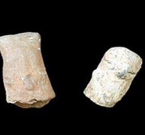 Κένυα: Ανακαλύφθηκαν τα αρχαιότερα λίθινα εργαλεία, ηλικίας 3,3 εκατ. ετών! - Κυρίως Φωτογραφία - Gallery - Video