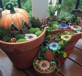 Φαντασία & μεράκι για μικρούς φανταστικούς κήπους μέσα σε σπασμένες γλαστρούλες - Κυρίως Φωτογραφία - Gallery - Video
