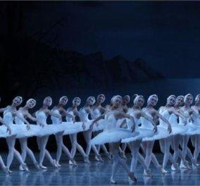 """Φιγούρες που εντυπωσιάζουν στον πάγο και ένας μαύρος κύκνος «αετός»: Η Λίμνη των Κύκνων """"αλλιώς"""", η ιστορία αγάπης ίδια! - Κυρίως Φωτογραφία - Gallery - Video"""
