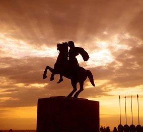 Η Ντόροθι Κινγκ ξαναχτυπά: ''Τα Σκόπια θα μπορούσαν να γίνουν μια επαρχία της Μακεδονίας με φόρο 25%''! - Κυρίως Φωτογραφία - Gallery - Video