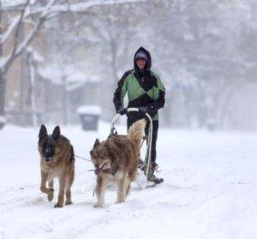 Η Νέα Υόρκη χιονισμένη και αγνώριστη σε 18 μοναδικά στιγμιότυπα - Κλοιός πρόωρου χειμώνα! (φωτό) - Κυρίως Φωτογραφία - Gallery - Video