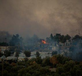 Μεγάλη φωτιά & ταραχές στη Μόρια - Σε κατάσταση έκτακτης ανάγκης η Λέσβος: Καταστράφηκε το ΚΥΤ, όπου έμεναν 13.000 μετανάστες, οι 35 με κορωνοϊό (φωτό - βίντεο) - Κυρίως Φωτογραφία - Gallery - Video