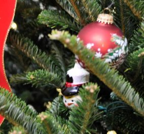 Story: Το μυστήριο με το δαχτυλίδι αρραβώνων που βρέθηκε σε χριστουγεννιάτικο δέντρο στο Ουισκόνσιν των ΗΠΑ! - Κυρίως Φωτογραφία - Gallery - Video
