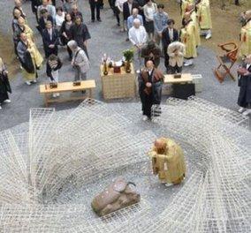 Αυτό και αν είναι διαφορετικό - Μνημείο για τα έντομα που... δολοφονήθηκαν - Κυρίως Φωτογραφία - Gallery - Video