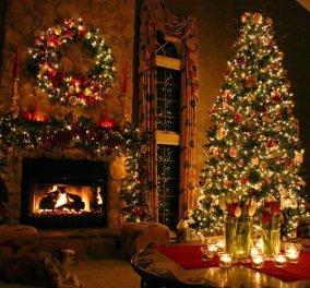 Πώς στολίζει το κάθε ζώδιο το χριστουγεννιάτικο δέντρο; Ποιοι είναι οι υπερβολικοί και ποιοι οι... αφαιρετικοί; - Κυρίως Φωτογραφία - Gallery - Video
