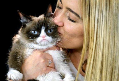 Στους ουρανούς ανέβηκε η πιο διάσημη γάτα του διαδικτύου – Η γαλανομάτα Grumpy Cat πέθανε από ουρολοίμωξη - Κυρίως Φωτογραφία - Gallery - Video
