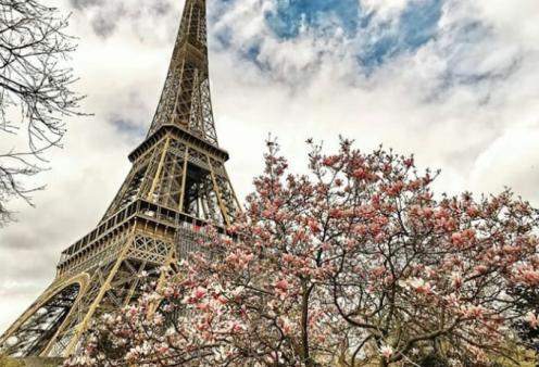 Εκκενώθηκε ο Πύργος του Άιφελ - Άνδρας απειλεί να τον ανατινάξει  - Κυρίως Φωτογραφία - Gallery - Video