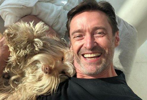 Ο Hugh Jackman αγκαλιά με τα σκυλιά του: Η τρομερή θέα στη θάλασσα και τα σχόλια για τα... μαλλιά του (φωτό) - Κυρίως Φωτογραφία - Gallery - Video