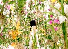 Good News: Δείτε αυτές τις εικόνες & το βίντεο & περιπλανηθείτε στον κήπο των ονείρων!  - Κυρίως Φωτογραφία - Gallery - Video 2