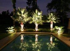 Κάντε τον κήπο σας παράδεισο: Ιδού εντυπωσιακές αλλά και χρήσιμες ιδέες - Κυρίως Φωτογραφία - Gallery - Video 2