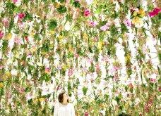 Good News: Δείτε αυτές τις εικόνες & το βίντεο & περιπλανηθείτε στον κήπο των ονείρων!  - Κυρίως Φωτογραφία - Gallery - Video 4