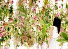 Good News: Δείτε αυτές τις εικόνες & το βίντεο & περιπλανηθείτε στον κήπο των ονείρων!  - Κυρίως Φωτογραφία - Gallery - Video 6