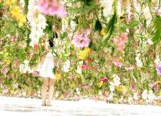 Good News: Δείτε αυτές τις εικόνες & το βίντεο & περιπλανηθείτε στον κήπο των ονείρων!  - Κυρίως Φωτογραφία - Gallery - Video 7