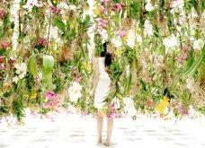 Good News: Δείτε αυτές τις εικόνες & το βίντεο & περιπλανηθείτε στον κήπο των ονείρων!  - Κυρίως Φωτογραφία - Gallery - Video 8