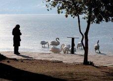 Μαγευτικά στιγμιότυπα: Οι παγωμένες λίμνες της Πρέσπας & της Καστοριάς σε απίθανα κλικς - Κυρίως Φωτογραφία - Gallery - Video 12