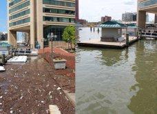 """Ο """"Mr Trush"""" καταβροχθίζει τόνους σκουπιδιών στο ποτάμι: Σε λίγο θα κολυμπούν θα ψαρεύουν & θα πίνουν καθαρό νερό - Κυρίως Φωτογραφία - Gallery - Video"""