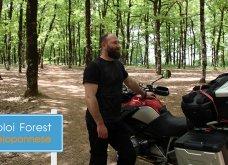Περιήγηση στη Φολόη - Το μαγικό δάσος των παραμυθιών στην Πελοπόννησο (Βίντεο) - Κυρίως Φωτογραφία - Gallery - Video
