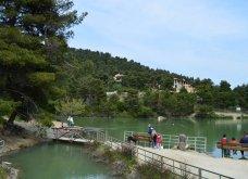 """Η """"μυστική"""" λίμνη Μπελέτσι βρίσκεται στην Αθήνα & μοιάζει εξωτική: Με πάπιες & καταπράσινο τοπίο - Δείτε φωτό & βίντεο - Κυρίως Φωτογραφία - Gallery - Video 5"""