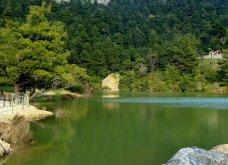 """Η """"μυστική"""" λίμνη Μπελέτσι βρίσκεται στην Αθήνα & μοιάζει εξωτική: Με πάπιες & καταπράσινο τοπίο - Δείτε φωτό & βίντεο - Κυρίως Φωτογραφία - Gallery - Video 6"""