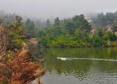 """Η """"μυστική"""" λίμνη Μπελέτσι βρίσκεται στην Αθήνα & μοιάζει εξωτική: Με πάπιες & καταπράσινο τοπίο - Δείτε φωτό & βίντεο - Κυρίως Φωτογραφία - Gallery - Video 7"""