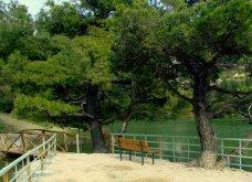 """Η """"μυστική"""" λίμνη Μπελέτσι βρίσκεται στην Αθήνα & μοιάζει εξωτική: Με πάπιες & καταπράσινο τοπίο - Δείτε φωτό & βίντεο - Κυρίως Φωτογραφία - Gallery - Video 9"""