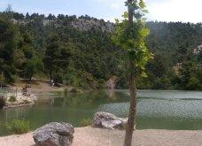 """Η """"μυστική"""" λίμνη Μπελέτσι βρίσκεται στην Αθήνα & μοιάζει εξωτική: Με πάπιες & καταπράσινο τοπίο - Δείτε φωτό & βίντεο - Κυρίως Φωτογραφία - Gallery - Video 10"""