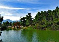 """Η """"μυστική"""" λίμνη Μπελέτσι βρίσκεται στην Αθήνα & μοιάζει εξωτική: Με πάπιες & καταπράσινο τοπίο - Δείτε φωτό & βίντεο - Κυρίως Φωτογραφία - Gallery - Video"""
