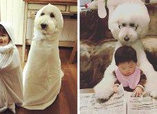 Αυτό το τρισχαριτωμένο Γιαπωνεζάκι και ο σκυλάκος της θα σας φτιάξουν την μέρα – φωτό - Κυρίως Φωτογραφία - Gallery - Video