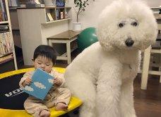 Αυτό το τρισχαριτωμένο Γιαπωνεζάκι και ο σκυλάκος της θα σας φτιάξουν την μέρα – φωτό - Κυρίως Φωτογραφία - Gallery - Video 2