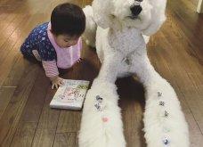 Αυτό το τρισχαριτωμένο Γιαπωνεζάκι και ο σκυλάκος της θα σας φτιάξουν την μέρα – φωτό - Κυρίως Φωτογραφία - Gallery - Video 3