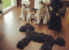 Αυτό το τρισχαριτωμένο Γιαπωνεζάκι και ο σκυλάκος της θα σας φτιάξουν την μέρα – φωτό - Κυρίως Φωτογραφία - Gallery - Video 7
