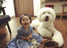 Αυτό το τρισχαριτωμένο Γιαπωνεζάκι και ο σκυλάκος της θα σας φτιάξουν την μέρα – φωτό - Κυρίως Φωτογραφία - Gallery - Video 18