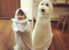 Αυτό το τρισχαριτωμένο Γιαπωνεζάκι και ο σκυλάκος της θα σας φτιάξουν την μέρα – φωτό - Κυρίως Φωτογραφία - Gallery - Video 8