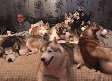 Ξεκαρδιστικές φωτό μοιράζονται με τους φίλους τα ξετρελαμένα αφεντικά γάτων & σκύλων - Κυρίως Φωτογραφία - Gallery - Video 13