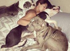 Ξεκαρδιστικές φωτό μοιράζονται με τους φίλους τα ξετρελαμένα αφεντικά γάτων & σκύλων - Κυρίως Φωτογραφία - Gallery - Video 18