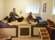 Ξεκαρδιστικές φωτό μοιράζονται με τους φίλους τα ξετρελαμένα αφεντικά γάτων & σκύλων - Κυρίως Φωτογραφία - Gallery - Video 23