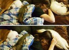 Ξεκαρδιστικές φωτό μοιράζονται με τους φίλους τα ξετρελαμένα αφεντικά γάτων & σκύλων - Κυρίως Φωτογραφία - Gallery - Video 35