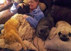 Ξεκαρδιστικές φωτό μοιράζονται με τους φίλους τα ξετρελαμένα αφεντικά γάτων & σκύλων - Κυρίως Φωτογραφία - Gallery - Video 36