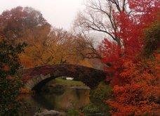 Το Φθινόπωρο στον πλανήτη - Οι μεταμορφώσεις της φύσης από την Ουαλία μέχρι την Ιαπωνία (ΦΩΤΟ) - Κυρίως Φωτογραφία - Gallery - Video 8