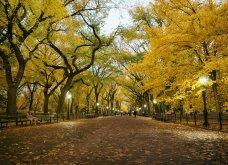 Το Φθινόπωρο στον πλανήτη - Οι μεταμορφώσεις της φύσης από την Ουαλία μέχρι την Ιαπωνία (ΦΩΤΟ) - Κυρίως Φωτογραφία - Gallery - Video 5