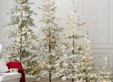 Αυτά είναι τα πιο όμορφα  χριστουγεννιάτικα δέντρα του κόσμου! - Θα σας κόψουν την ανάσα (ΦΩΤΟ) - Κυρίως Φωτογραφία - Gallery - Video
